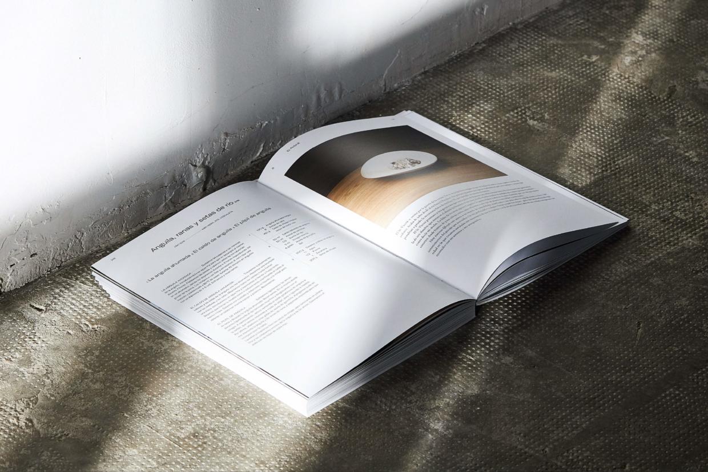 Llibre L'escaleta