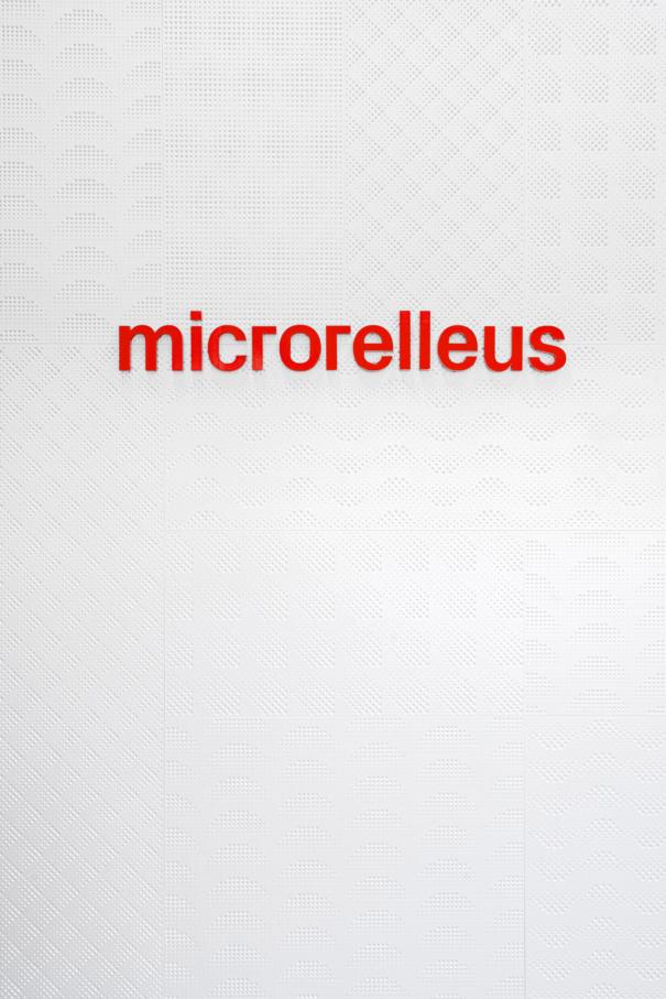 Microrelleus interiorisme